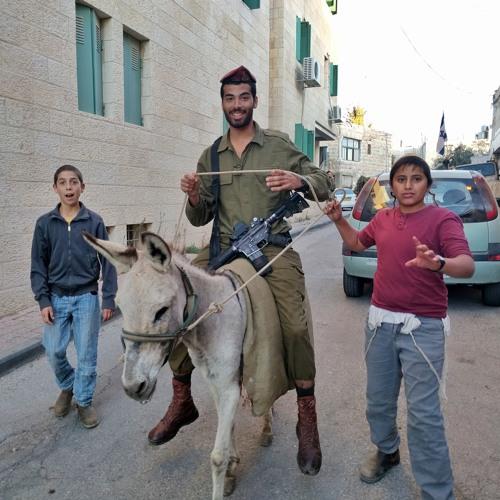 Executing Terrorists?